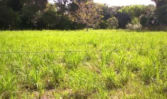 Foto de terreno industrial en venta en 45 200, progreso de castro centro, progreso, yucatán, 9178641 No. 01