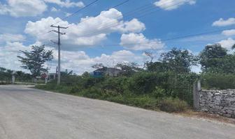 Foto de terreno habitacional en venta en 46 , tizimin centro, tizimín, yucatán, 0 No. 01
