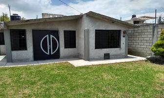 Foto de casa en venta en 5 de febrero s/n , san salvador, toluca, méxico, 12708887 No. 01