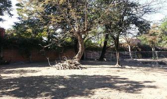 Foto de terreno habitacional en venta en 5 de mayo 11, itzamatitlán, yautepec, morelos, 10277384 No. 01