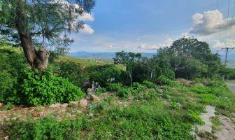 Foto de terreno habitacional en venta en Ixtapan de la Sal, Ixtapan de la Sal, México, 14726292,  no 01