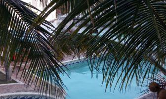 Foto de departamento en renta en Boca del Río Centro, Boca del Río, Veracruz de Ignacio de la Llave, 8217836,  no 01