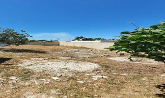 Foto de terreno habitacional en venta en 8 , chichi suárez, mérida, yucatán, 0 No. 01