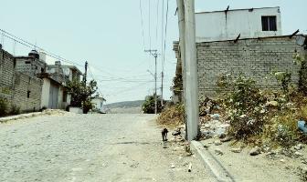 Foto de terreno habitacional en venta en 8 , el rodeo, tepic, nayarit, 10641634 No. 01