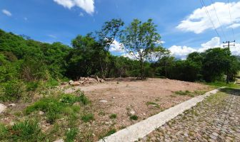 Foto de terreno habitacional en venta en Ixtapan de la Sal, Ixtapan de la Sal, México, 11585215,  no 01