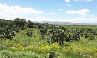 Foto de terreno habitacional en venta en El Cerrito de Téllez, Zempoala, Hidalgo, 6879245,  no 01