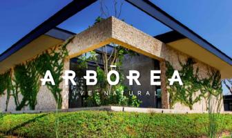 Foto de terreno habitacional en venta en Mérida, Mérida, Yucatán, 12238187,  no 01