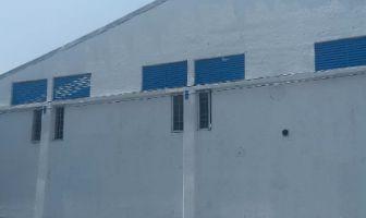 Foto de nave industrial en renta en Los Olivos, Tláhuac, DF / CDMX, 12362285,  no 01