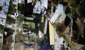 Foto de terreno habitacional en venta en  , alberos, cadereyta jiménez, nuevo león, 3236455 No. 01