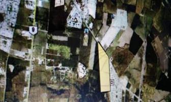 Foto de terreno habitacional en venta en  , alberos, cadereyta jiménez, nuevo león, 0 No. 01