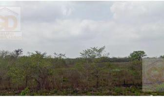 Foto de terreno habitacional en venta en  , aldama, aldama, tamaulipas, 11228358 No. 01