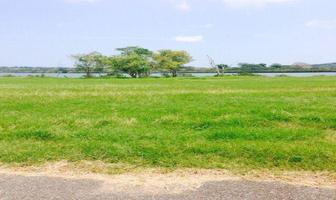 Foto de terreno habitacional en venta en  , aldama, aldama, tamaulipas, 11700101 No. 02
