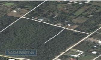 Foto de terreno habitacional en venta en allende , lazarillos de abajo, allende, nuevo león, 8461299 No. 01