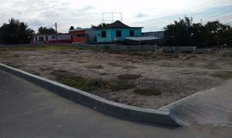 Foto de terreno comercial en renta en  , altamira centro, altamira, tamaulipas, 4634694 No. 01