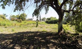 Foto de terreno habitacional en venta en  , altos de oaxtepec, yautepec, morelos, 10098823 No. 01