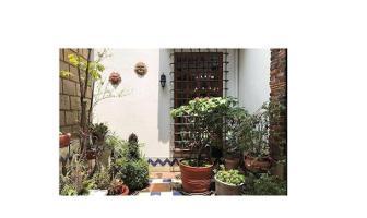 Foto de casa en venta en alud numero 55 lote 10 manzana 00 55, jardines del pedregal, álvaro obregón, df / cdmx, 0 No. 01
