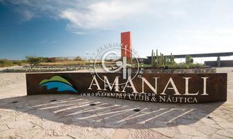 Foto de terreno habitacional en venta en amanali , tepeji, tepeji del río de ocampo, hidalgo, 0 No. 01