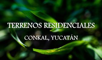 Foto de terreno habitacional en venta en amaranta , conkal, conkal, yucatán, 0 No. 01