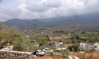 Foto de terreno habitacional en venta en  , amatlán de quetzalcoatl, tepoztlán, morelos, 6469075 No. 01