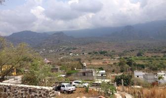 Foto de terreno habitacional en venta en  , amatlán de quetzalcoatl, tepoztlán, morelos, 7053079 No. 01