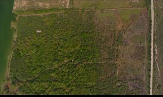 Foto de terreno habitacional en venta en  , anáhuac, pueblo viejo, veracruz de ignacio de la llave, 8315549 No. 01