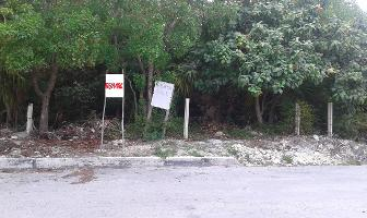 Foto de terreno habitacional en venta en andres q.roo , puerto morelos, benito juárez, quintana roo, 7147138 No. 01