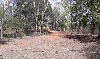 Foto de terreno habitacional en venta en antigua hacienda , izamal, izamal, yucatán, 0 No. 01