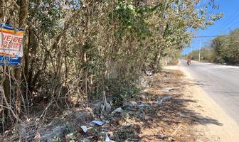 Foto de terreno habitacional en venta en antonio neyra , alfredo v bonfil, benito juárez, quintana roo, 0 No. 01