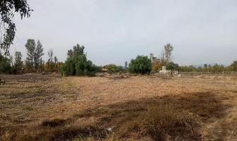 Foto de terreno habitacional en venta en  , apaseo el grande centro, apaseo el grande, guanajuato, 12877967 No. 01
