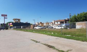 Foto de terreno habitacional en venta en  , aranjuez, durango, durango, 5970444 No. 01