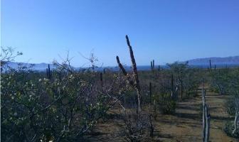 Foto de terreno habitacional en venta en  , plan hidráulico, la paz, baja california sur, 9356671 No. 01
