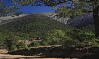 Foto de terreno habitacional en venta en  , arteaga centro, arteaga, coahuila de zaragoza, 18740641 No. 01
