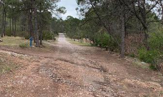 Foto de terreno habitacional en venta en  , arteaga centro, arteaga, coahuila de zaragoza, 7545800 No. 01