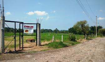 Foto de terreno habitacional en venta en atras de colegio español , cuautlixco, cuautla, morelos, 3515682 No. 01