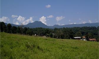 Foto de terreno habitacional en venta en avándaro s/n. , avándaro, valle de bravo, méxico, 5818464 No. 01