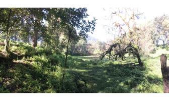 Foto de terreno habitacional en venta en  , avándaro, valle de bravo, méxico, 11520843 No. 01