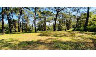 Foto de terreno habitacional en venta en  , avándaro, valle de bravo, méxico, 16208714 No. 01