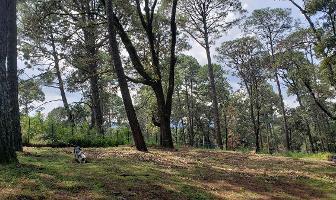 Foto de terreno habitacional en venta en  , avándaro, valle de bravo, méxico, 16944029 No. 01