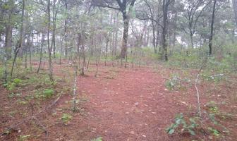 Foto de terreno habitacional en venta en  , avándaro, valle de bravo, méxico, 18345743 No. 01