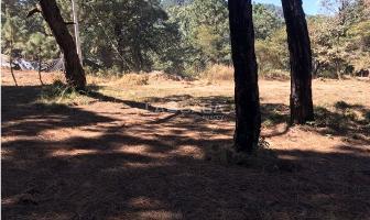 Foto de terreno habitacional en venta en  , avándaro, valle de bravo, méxico, 4613524 No. 01