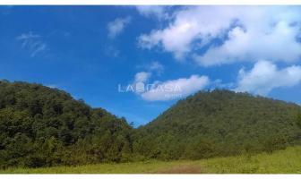 Foto de terreno habitacional en venta en  , avándaro, valle de bravo, méxico, 5671440 No. 01
