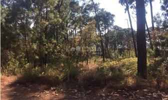 Foto de terreno habitacional en venta en  , monte alto, valle de bravo, méxico, 5838897 No. 03