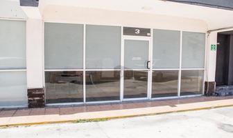 Foto de local en renta en avenida aviación , ciudad del carmen centro, carmen, campeche, 13013347 No. 01