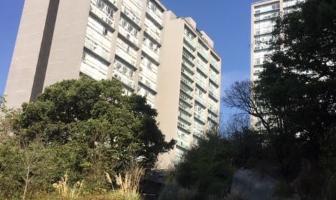 Foto de departamento en renta en avenida de las torres , san jerónimo aculco, álvaro obregón, df / cdmx, 0 No. 01