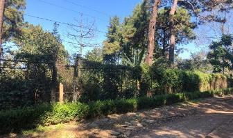 Foto de terreno habitacional en venta en avenida de los pinos , avándaro, valle de bravo, méxico, 11934262 No. 01