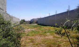 Foto de terreno habitacional en venta en avenida santa cruz 0, san sebastián, chalco, méxico, 8871704 No. 01