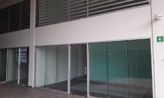 Foto de local en venta en avenida sayil lote 2 , supermanzana 20 centro, benito juárez, quintana roo, 5739275 No. 02