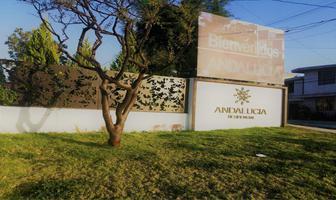 Foto de departamento en venta en avenida triunfo maderista 2, zona cementos atoyac, puebla, puebla, 17563111 No. 01