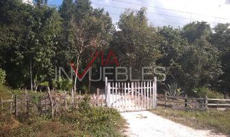 Foto de terreno habitacional en venta en  , bacalar, bacalar, quintana roo, 12318751 No. 01