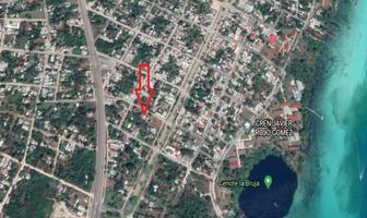 Foto de terreno habitacional en venta en  , bacalar, bacalar, quintana roo, 18639625 No. 01